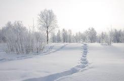 Paysage d'hiver Image libre de droits