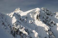 Paysage d'hiver Photographie stock libre de droits
