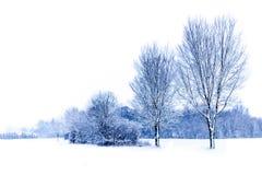 Paysage d'hiver Photographie stock