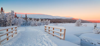 Paysage d'hiver Images stock
