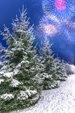 Paysage d'hiver avec des arbres de Noël couverts de neige contre le contexte du salut de fête de feu d'artifice Célébration nouve photo libre de droits