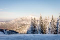 Paysage d'hiver avec des arbres et des montagnes couverts de neige photographie stock libre de droits