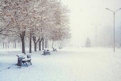 Paysage d'hiver avec des bancs dans l'allée du parc de ville photos stock