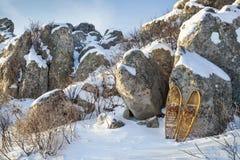 Paysage d'hiver avec des raquettes Photographie stock libre de droits