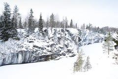 Paysage d'hiver avec l'arbre de neige et de sapin Photographie stock