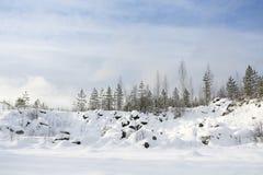 Paysage d'hiver avec l'arbre de neige et de sapin Images stock