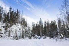 Paysage d'hiver avec l'arbre de neige et de sapin Photographie stock libre de droits