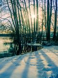 Paysage d'hiver avec l'arrangement du soleil parmi les arbres au lac s Images stock