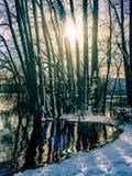 Paysage d'hiver avec l'arrangement du soleil parmi les arbres au lac s Image libre de droits