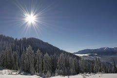 Paysage d'hiver avec la forêt de sapins couverte par la chute de neige importante en montagne de Postavaru, station de vacances d images libres de droits