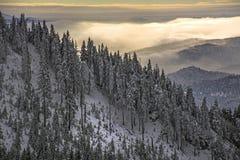 Paysage d'hiver avec la forêt de sapins couverte par la chute de neige importante en montagne de Postavaru, station de vacances d photos stock