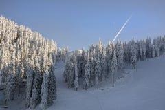 Paysage d'hiver avec la forêt de sapins couverte par la chute de neige importante en montagne de Postavaru, station de vacances d photo stock