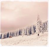 Paysage d'hiver avec la neige en montagnes Carpathiens, Ukraine vi image stock