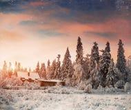 Paysage d'hiver avec la neige en montagnes Carpathiens, Ukraine vi Photo libre de droits