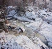 Paysage d'hiver avec le courant de forêt image stock