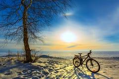 Paysage d'hiver avec une bicyclette Le fleuve Ob, Sibérie occidentale, R Photographie stock libre de droits