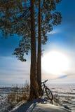 Paysage d'hiver avec une bicyclette Le fleuve Ob, Sibérie occidentale, R Image stock