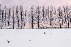 Paysage rural d'hiver Photo libre de droits