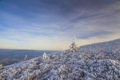 Paysage d'hiver avec vue sur l'accidenté à montagneux image libre de droits