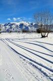 Paysage d'hiver couvert de neige Image stock