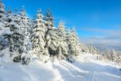 Paysage d'hiver dans Beskid Zywiecki- Pologne Photos stock