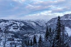 Paysage d'hiver dans des arbres de la Norvège après coucher du soleil Image libre de droits