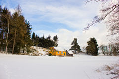 Paysage d'hiver dans la forêt Photographie stock