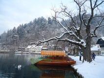 Paysage d'hiver dans le lac saigné, Slovénie photo libre de droits
