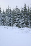 Paysage d'hiver dans les Frances. Photographie stock libre de droits