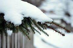 Paysage d'hiver de campagne Photo stock