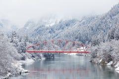 Paysage d'hiver de campagne du Japon photo libre de droits