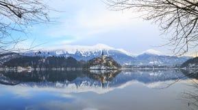 Paysage d'hiver de lac Bled Photographie stock libre de droits