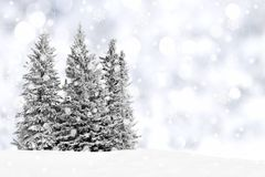 Paysage d'hiver de Milou Photos libres de droits