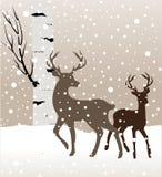 Paysage d'hiver de neige avec deux cerfs communs et arbres de bouleau Image libre de droits