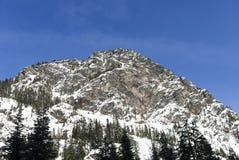 Paysage d'hiver de Rocky Summit Peak Covered dans la neige de poudre au-dessus de la forêt de montagne Photos stock