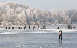 Paysage d'hiver des arbres givrés, neige blanche en parc de ville Arbres couverts de neige Photos libres de droits