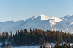 Paysage d'hiver des montagnes de Tatra Photos libres de droits