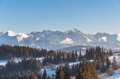 Paysage d'hiver des montagnes de Tatra Photographie stock libre de droits