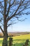 Paysage d'hiver du Sussex photo libre de droits