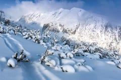 Paysage d'hiver en montagnes Photos libres de droits