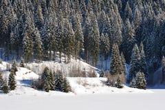 Paysage d'hiver en montagnes de Bucegi Image stock
