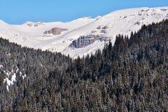 Paysage d'hiver en montagnes de Bucegi Photo libre de droits