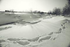 Paysage d'hiver en nature images stock