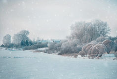 Paysage d'hiver en nature de neige photo libre de droits