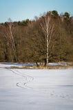Paysage d'hiver en Russie (région de Kaluga) images libres de droits
