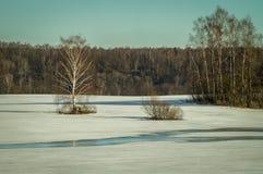 Paysage d'hiver en Russie (région de Kaluga) Image libre de droits
