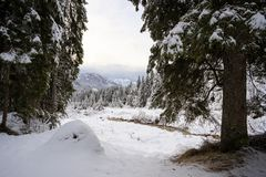 Paysage d'hiver en Val Canali Image stock