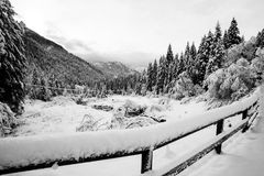 Paysage d'hiver en Val Canali Images stock