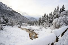 Paysage d'hiver en Val Canali Photographie stock