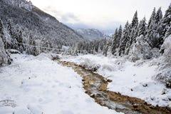 Paysage d'hiver en Val Canali Photographie stock libre de droits
